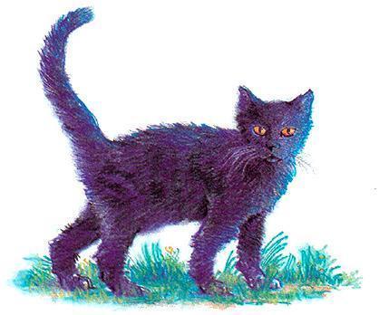Чёрная кошечка