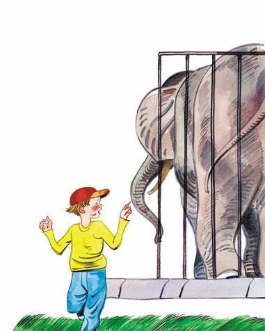 Фома в зоопарке у клетки слона