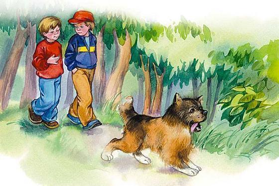 мальчики идут через лес парк с собакой