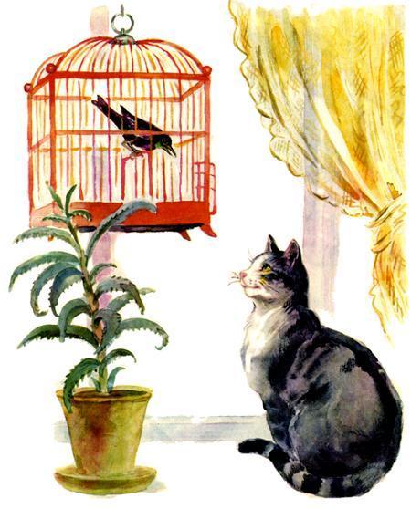 кот кошка и птица в клетке