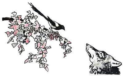 Волк и сорока